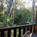 From balcony