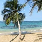 Punta Uva beach  - the most beautiful...