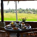 Breakfast with rice field view