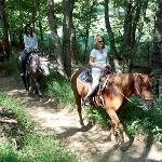 Year round horseback riding.