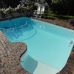 THE SWIMMING POOL IN FRONT GARDEN