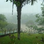 View from dining, in the heavy Rain