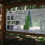 Oyster River nature hike map & directive