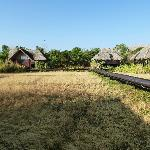 Paddy dwellings in morning