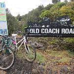 Old coach road bike ride near Snowy waters lodge