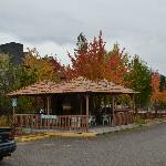 Fall colours over the BBQ hut