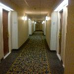 The hallway to my room