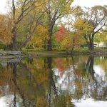 otoño en Villa 25 de Mayo