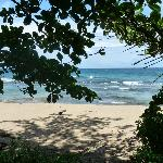 Beach in front of Tree House Lodge
