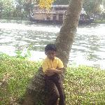 palmgrove
