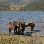 Shuodu Lake