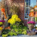 some of the autumn decorations