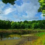 Ontario County Park at  Gannett Hill