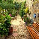Back walled garden