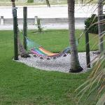 Hammock in grounds