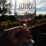 Enjoying wine at the bocce court