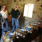 Salvestrin Winery