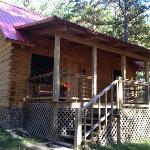 the Ozarks cabin