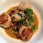 seared scallops at restaurant