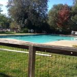 Nice pool and grass area, chairs, picnic tables and hot tub