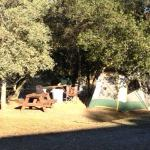 Just 1 of many tent sites