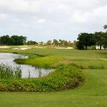 1st Tee at Davie Golf and Country Club (formerly Arrowhead)