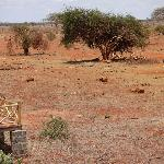 View from our balcony in Tsavo East