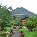 Volcano view from our front door (Room #18)