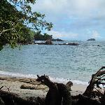 Beach at nearby Manuel Antonio National Park