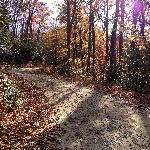 Road to Brevard