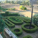 Jardim de Buxos