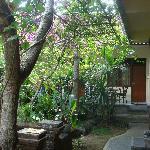 Mai Malu garden