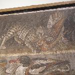 Pompeiians had LOLcats too!