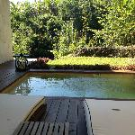 SPA SUITE plunge pool view
