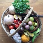 Fresh produce from the garden and markets