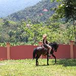 Horse back ride on jungle trails or gallop along the beach