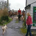 Foxhounds meeting at Peter Tavy