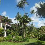 Sandpiper Gardens