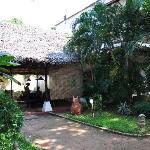jardín y restaurante