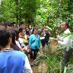 Guide is explaining about herbals