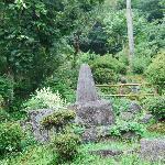 Sinchaya의 사진