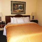 Executive Suite- King Bed
