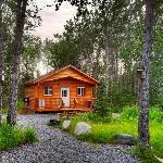 Our Kenai Cabins