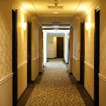 Hallway which was very cold!