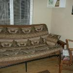 living room couch/futon