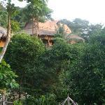 vue bungalow et jardin