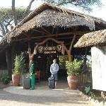 welcome to Kibo Safari camp