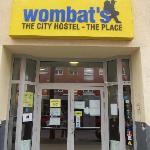 Wombat's