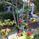 Décoration Floral à divers endroit du jardin