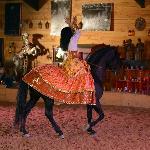 Equestrian Theater Camarkas